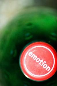 Le bonheur est un état interne, une émotion choisie et à installer en soi