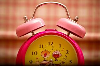 Etre content de se lever le matin pour faire son activité préférée !