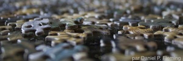 Puzzle-par-Daniel-P.-Fleming-600x200