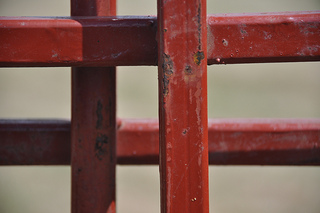 """Se libérer de son indentification, de son """"attachement à la """"Forme"""". Photo par brunobord"""