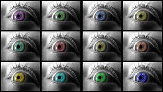 vision du monde, croyance, conditionnement, fermeture, égo
